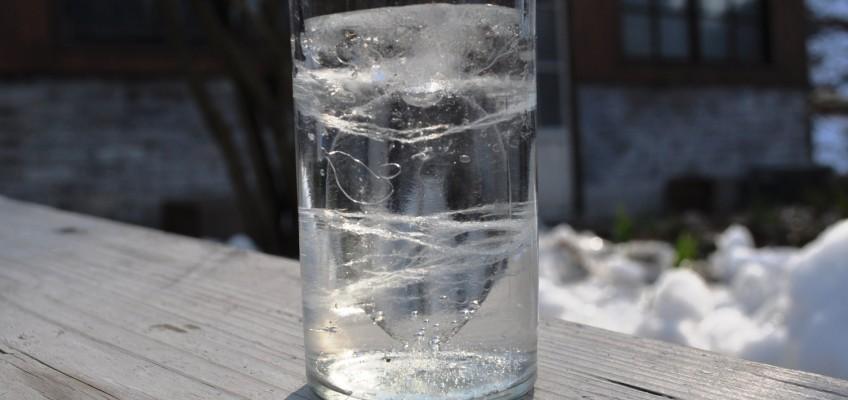 凍る朝 氷の形