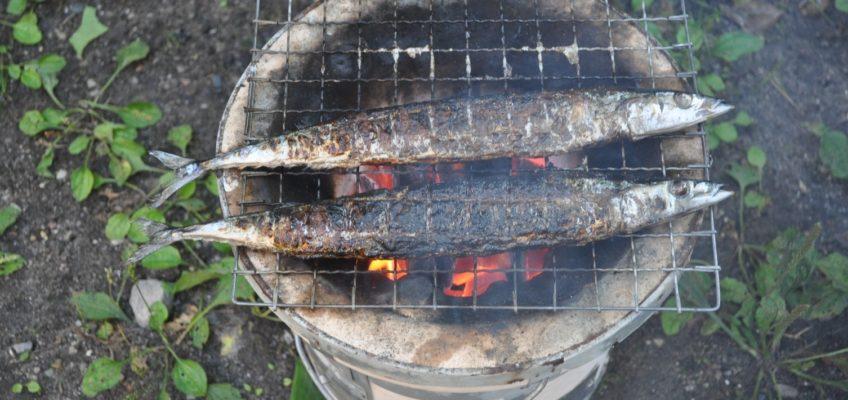 秋晴れの秋刀魚会