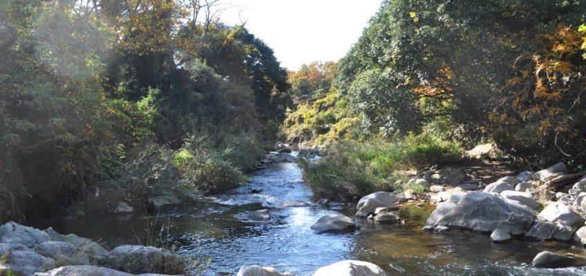 小さな憩いの場へようこそ『ショート・リトリートin山水ラボラトリー』11/14(水)開催
